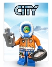 City Arctic